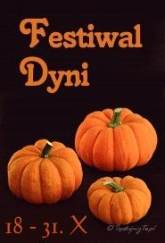 Festiwal Dyni 2014